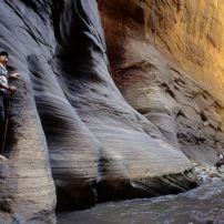Virgin River Narrows, Zion National Park, Utah, USA