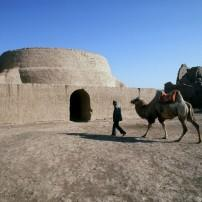 Camel, Silk Road, Turpan, China