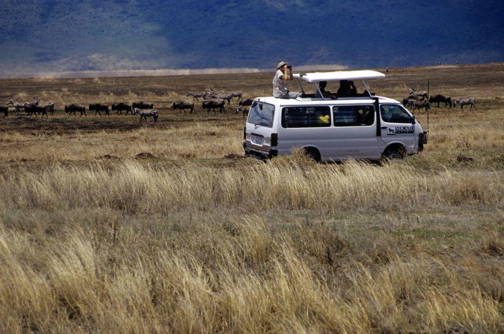 Safari, Ngorongoro Crater, Tanzania