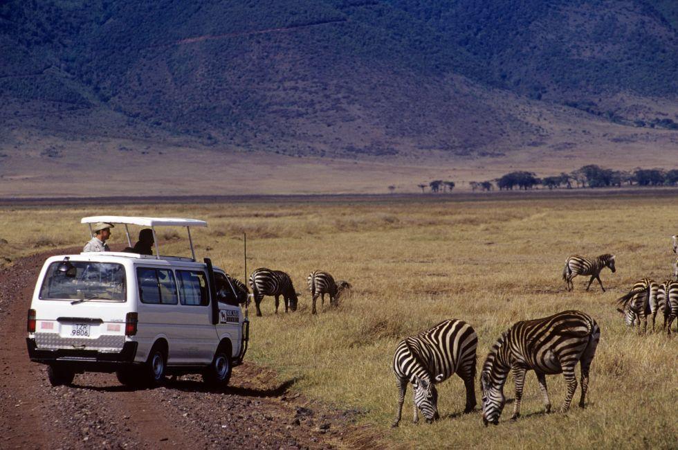 Wildlife, Ngorongoro Crater, Tanzania