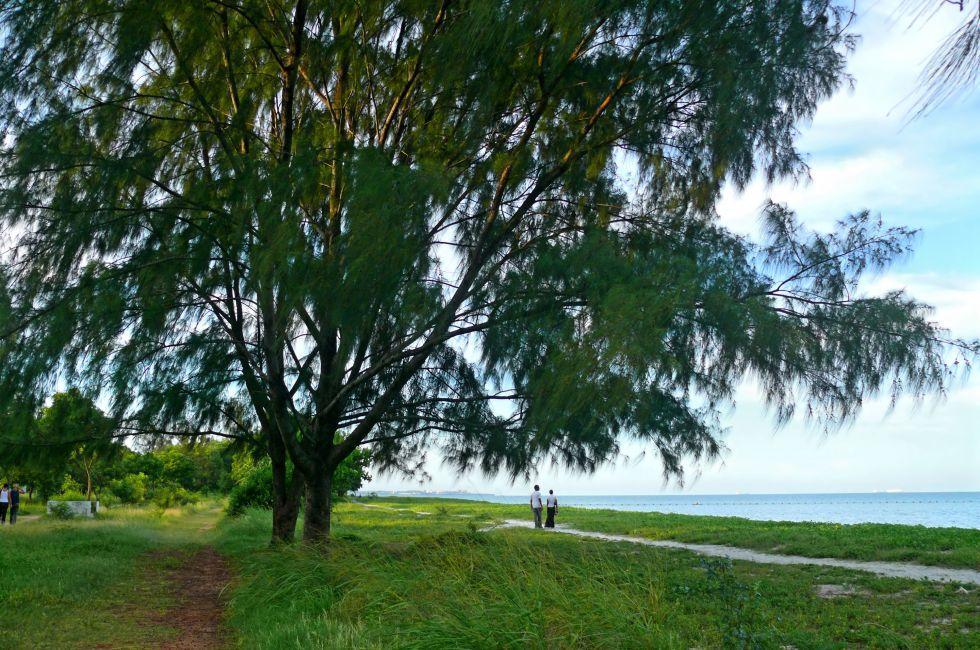 Coast, Dar es Salaam, Tanzania