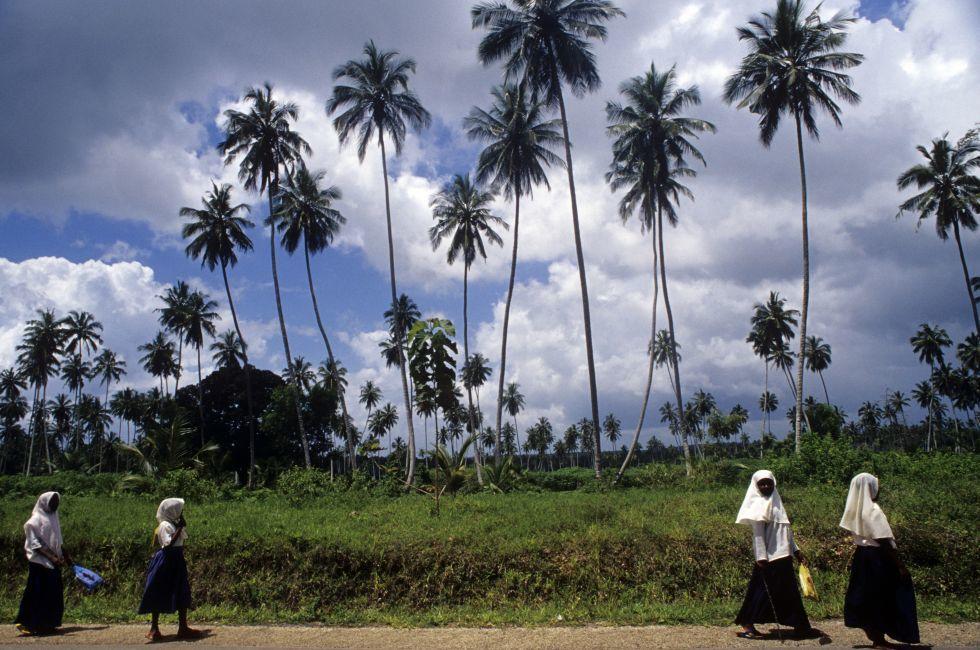 Women, Walking, Zanzibar, Tanzania