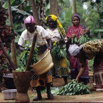 Women, Zanzibar, Tanzania