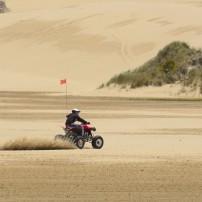 Dunes, Reedsport, Oregon, USA