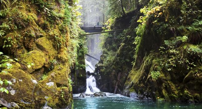Olympic National Park Travel Guide Expert Picks For Your