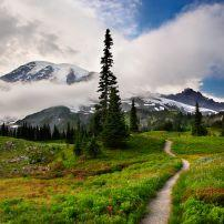 Mt Rainier, Washington, USA