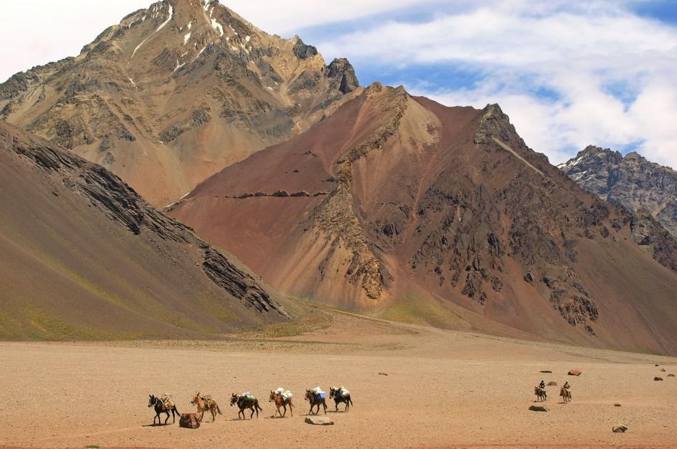 Horses, Hikers, Desert, Andes, Wine Regions, Argentinas