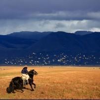 Gaucho, Horse, Patagonia, Argentina