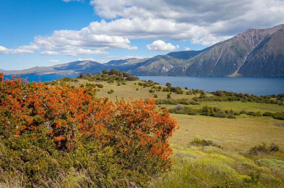 Lake Huechulafquen, National Park Lanin, San Martin de los Andes, Neuquen, Patagonia, Argentina