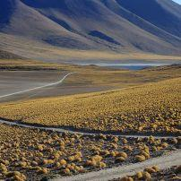Road, Altiplano high plateau, Atacama Desert, Chile