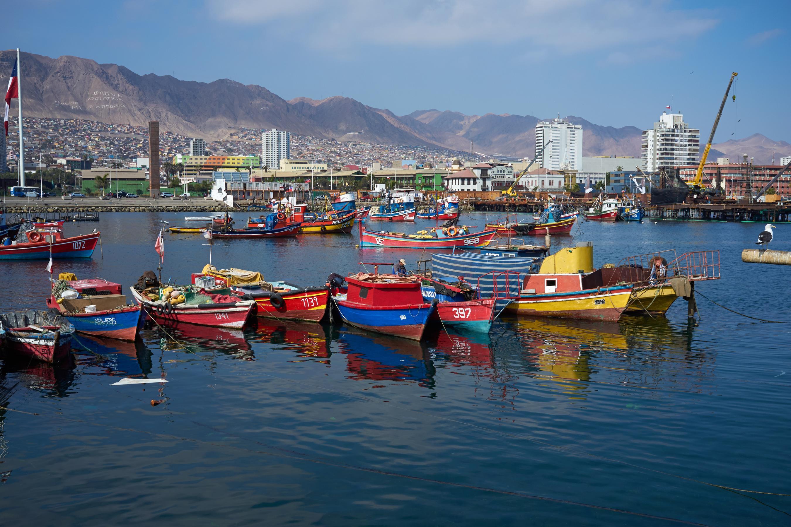 Antofagasta Chili chile