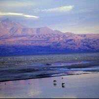 Salt Flats, Atacama Desert, Chile