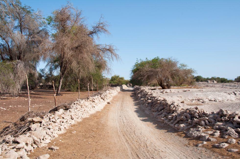 Road, Pampa del Tamarugal Desert, Chile