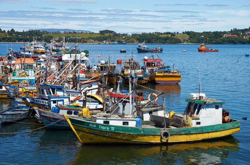 Fishing Boats, Quellon, Chile