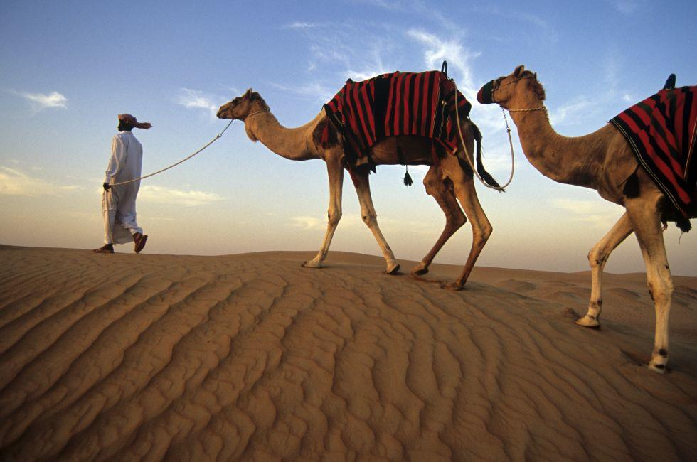 South Beach Hotels >> United Arab Emirates Photo Gallery | Fodor's Travel