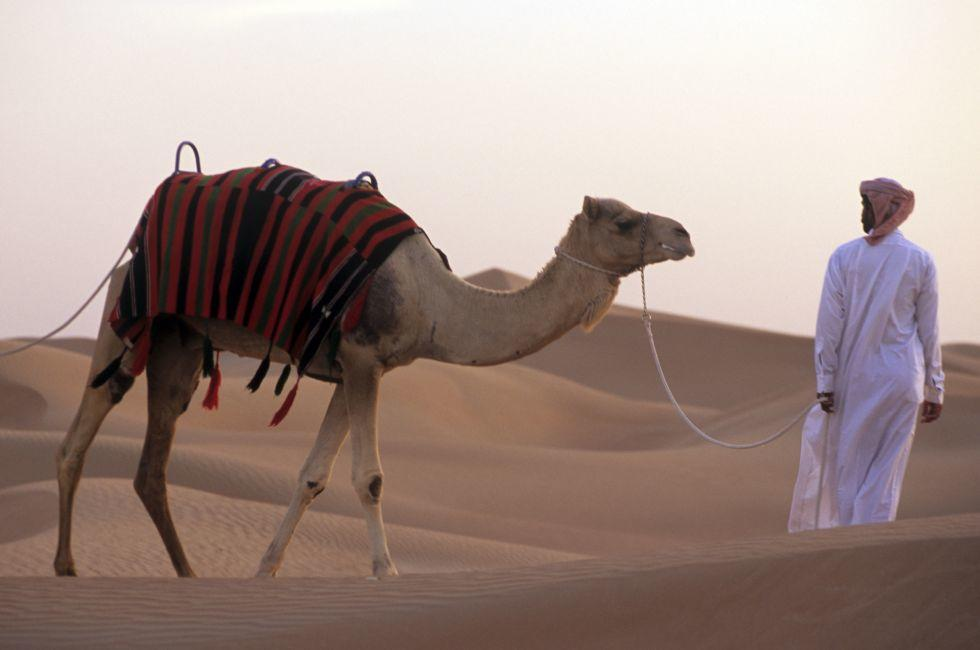 Arabian Adventures, Dubai Province, UAE