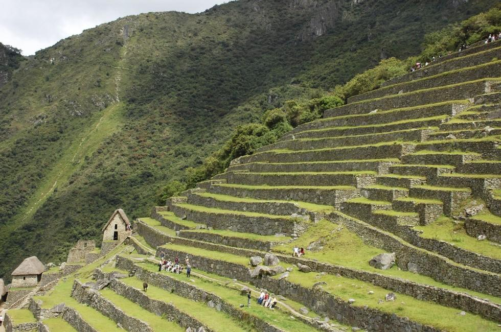 Terraces, Mountains, Machu Picchu and The Inca Trail, Peru