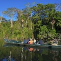 The Amazon, Tambopata National Park, The Amazon Basin, Peru