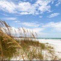 Coastline, Siesta Key Beach, Sarasota, Florida, USA