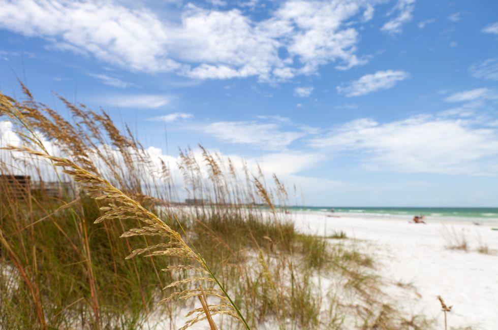 Coastline, Siesta Key Beach, Sarasota, Florida, USA