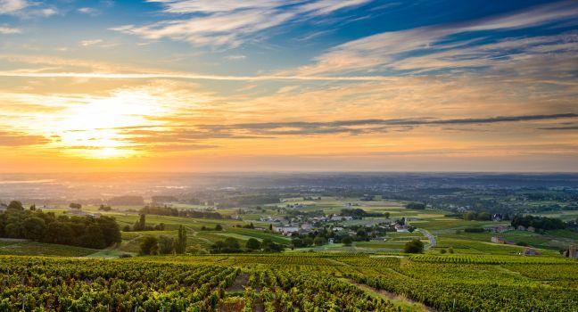 Beaujolais Route Du Vin Guide Fodor S Travel