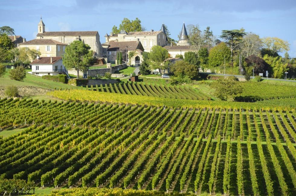Vineyards of Saint Emilion, Bordeaux, Bordeaux and the Wine Country, France