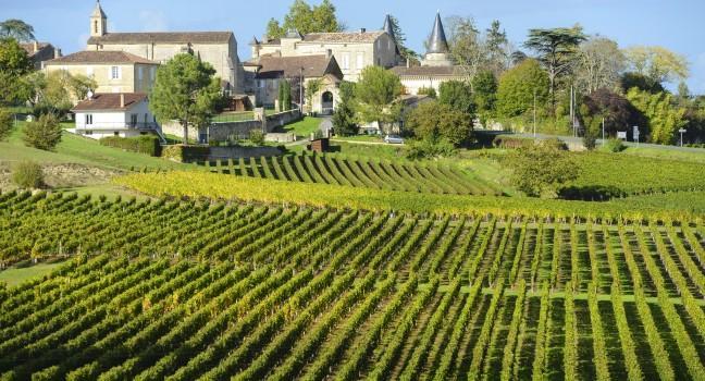 Francuska  - Page 4 Vineyard-saint-emilion-bordeaux-and-the-wine-country-france_main