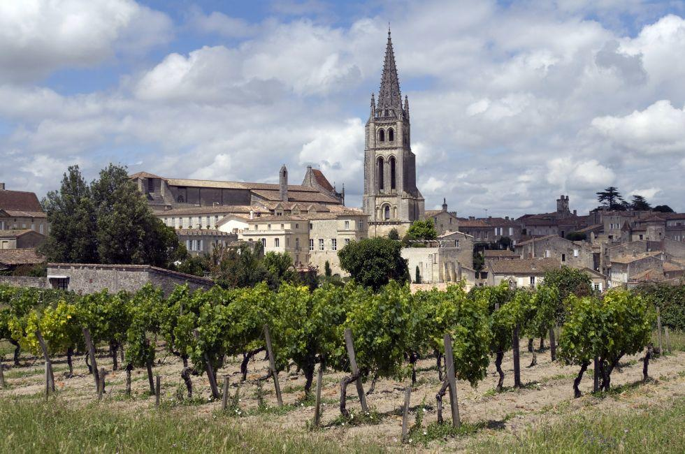 Vineyard, St. Emilion, France