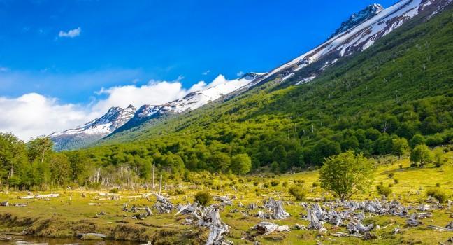 Parque Nacional Tierra Del Fuego Argentina Guide Fodor S Travel