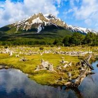 Landscape, Ushuaia National Park, Ushuaia, Argentina