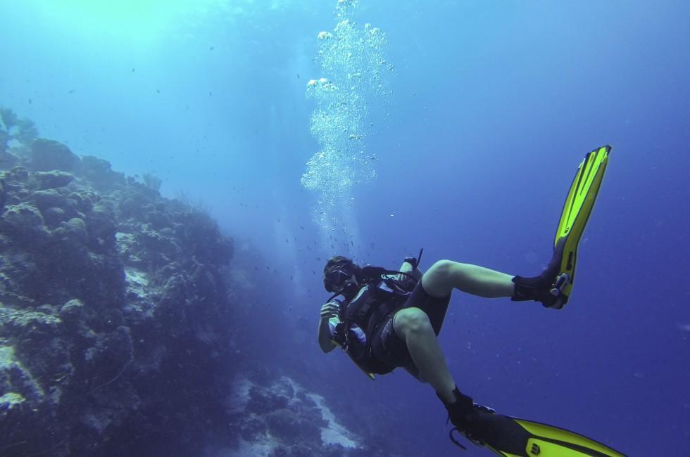 Scuba Diver, Reef, Bonaire, Caribbean