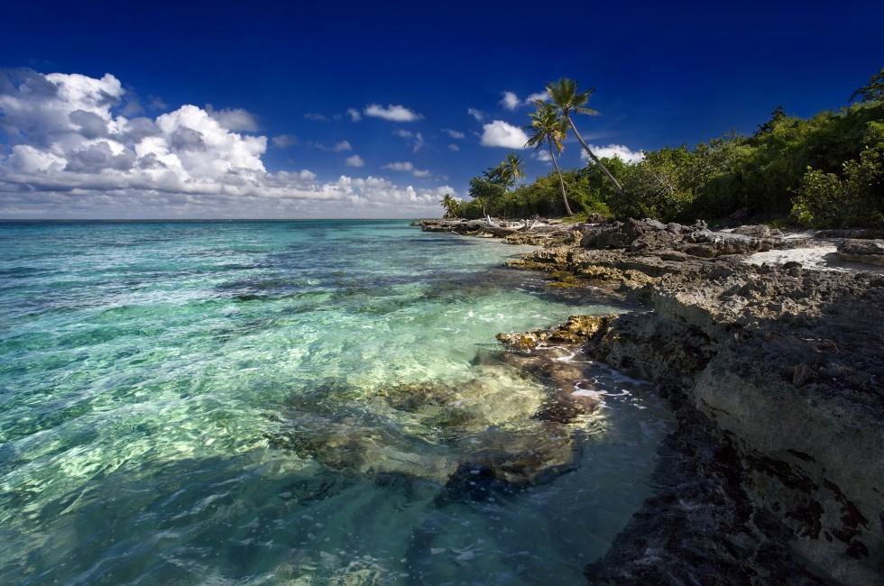 Cliff, Coastline, Dominica, Caribbean