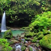 Waterfall, Rainforest, Dominica, Caribbean