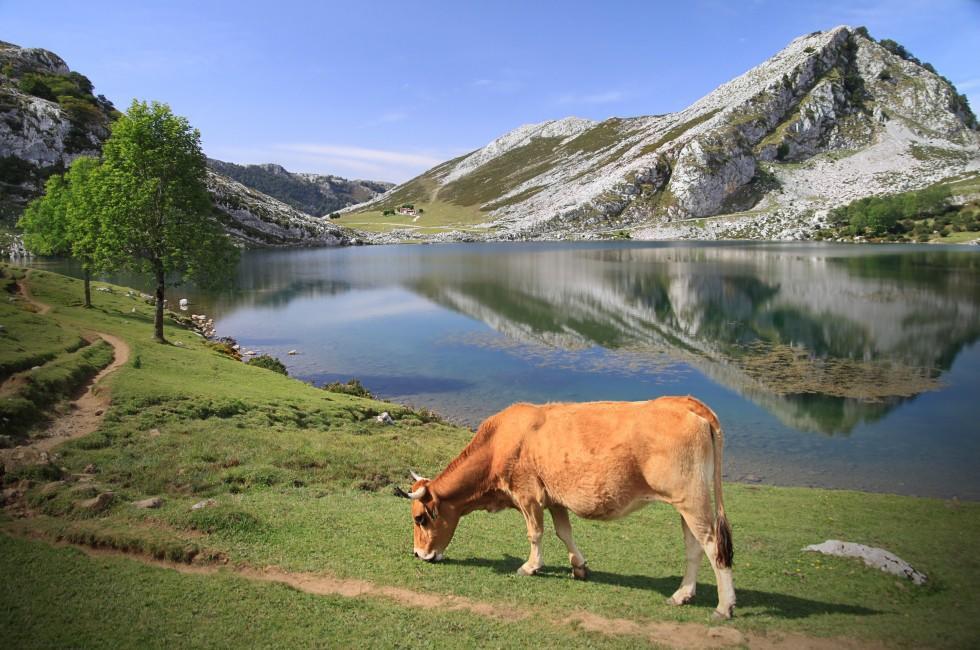 Galicia and Asturias Travel Guide - Expert Picks for your