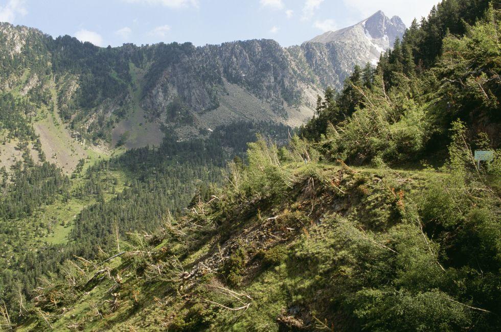 Aguies Tortes National Park, Espot, Pyrenees, Spain