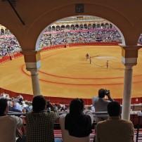 Plaza de Toros de Sevilla, Andalusia, SPain
