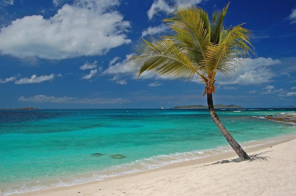 Beach, Palm Island, St. Vincent, Caribbean