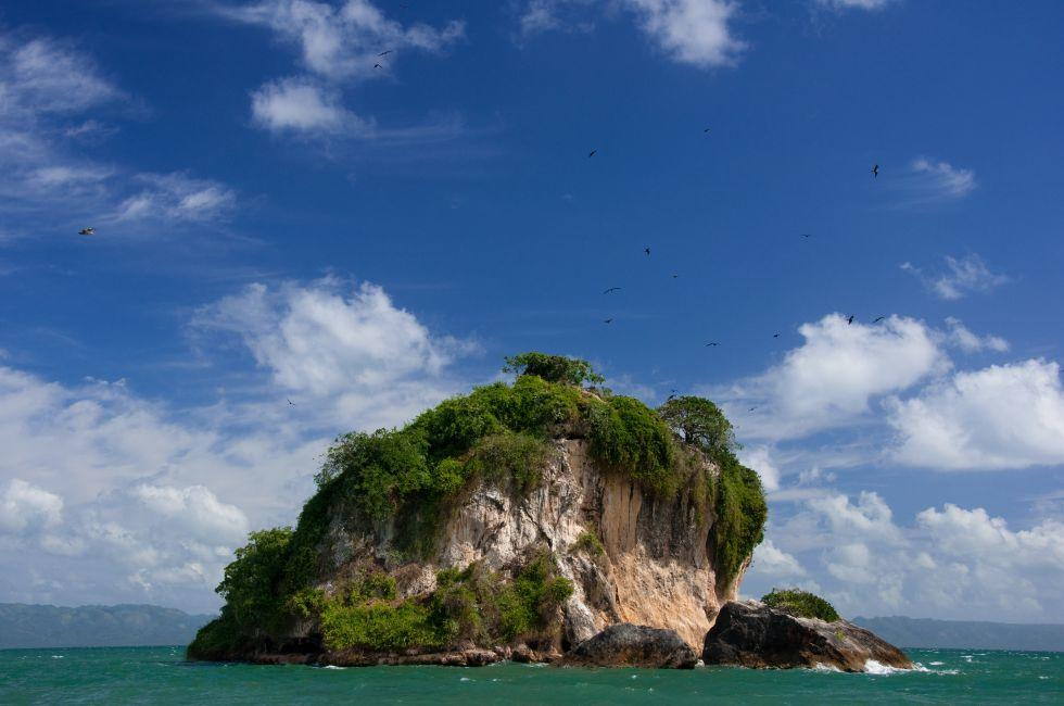 Los Haitises National Park, Bird Island, Dominican Republic, Caribbean