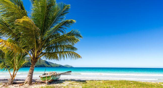 Boat, Palm Tree, Playa Rincon, Las Galeras, Dominican Republic, Caribbean