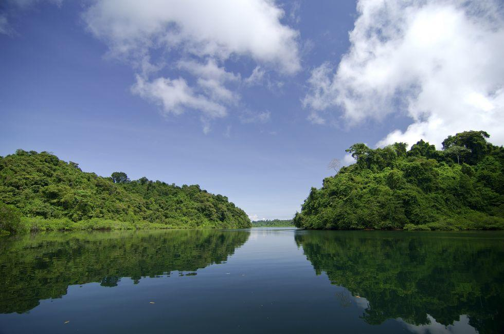 Mangroves, Coiba National Park, Panama