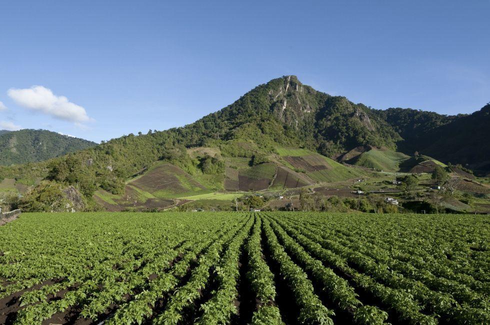 Cerro Punta village, Chiriqui province, Panama