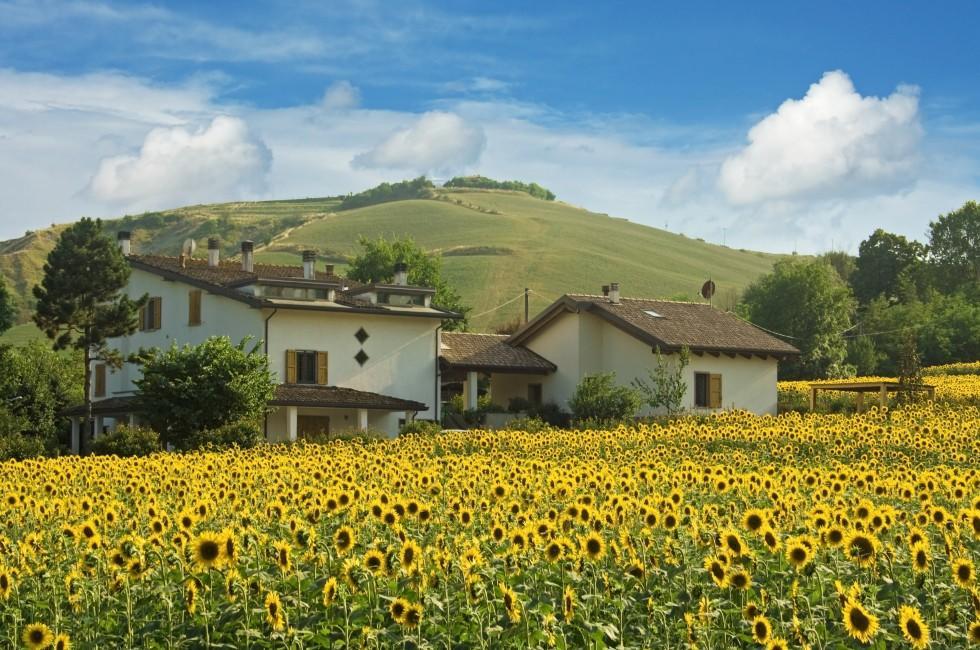 House, Flowers, Emilia-Romagna, Italy