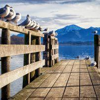Wooden Jetty, Chiemsee Lake, Bavaria, Germany