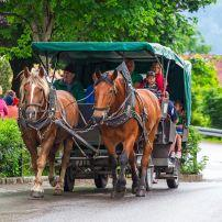 Horse-Drawn Carriage, Hohenschwangau, Germany