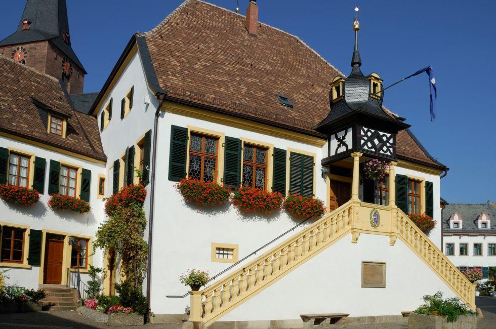 Deidesheim, The Pfalz and Rhine Terrace, Germany, Europe.