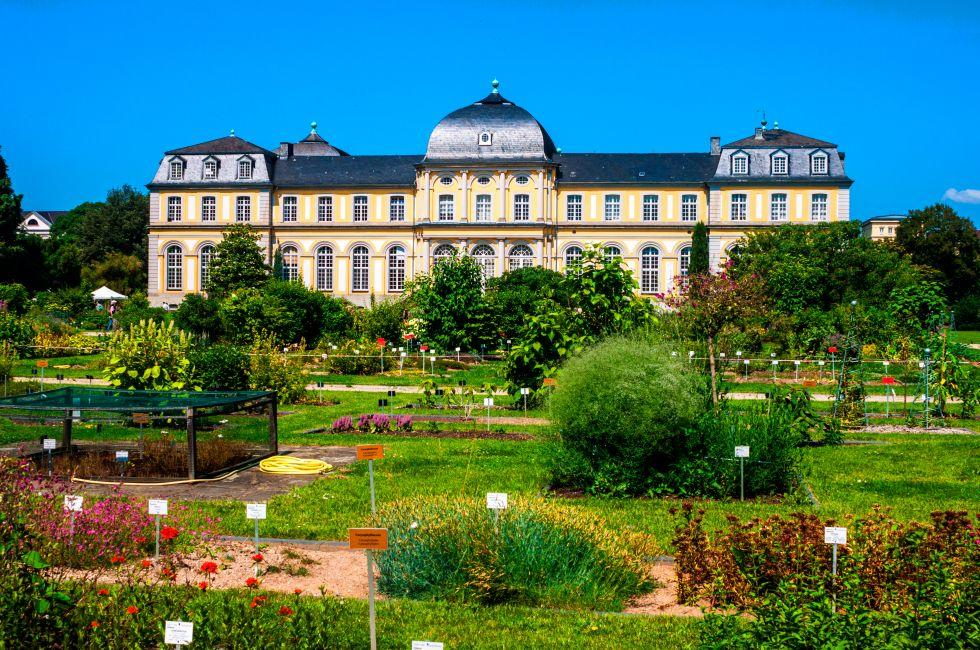 Poppelsdorfer Schloss (Poppelsdorf Palace), Bonn, The Rhineland, Germany, Europe.