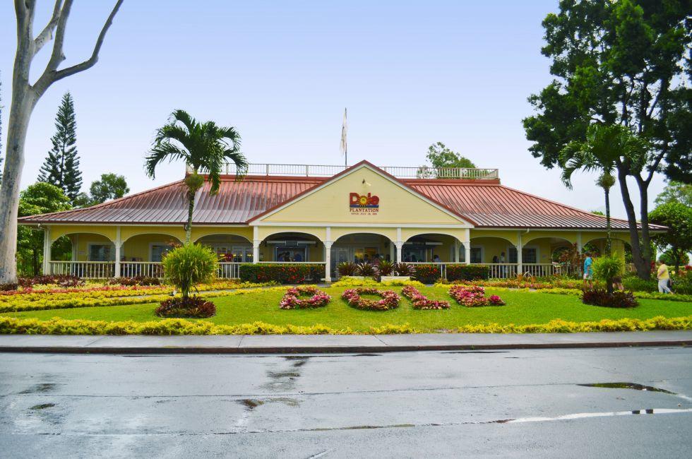 Dole Pineapple Plantation, Central Oahu, Oahu, Honolulu and Oahu, Hawaii, USA, North America