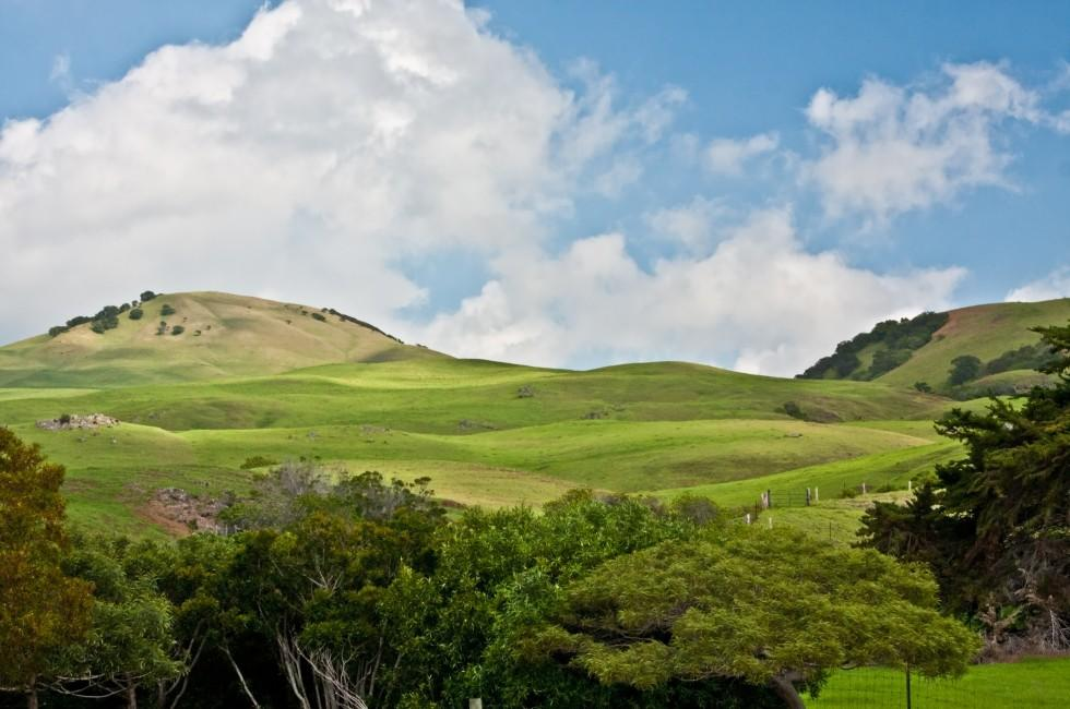 Hills, Waimea, Big Island, Hawaii, USA