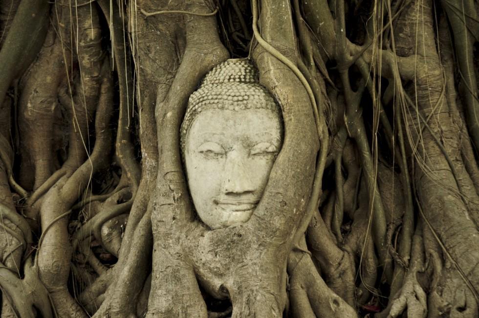 Buddha, Wat Mahathat, Ayutthaya Historical Park, Thailand