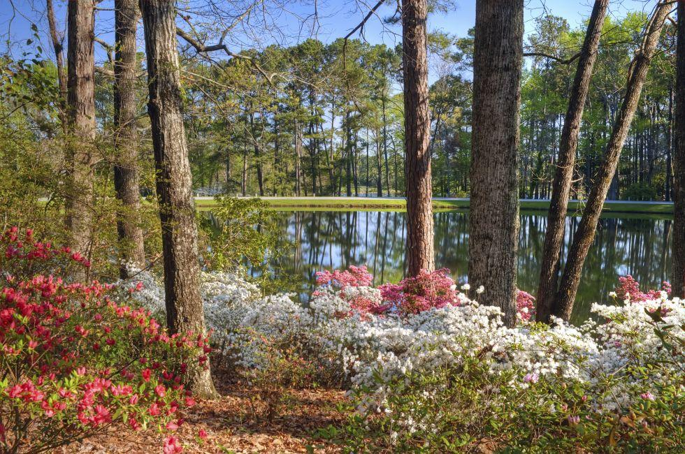 Callaway Gardens, Pine Mountain, Georgia.